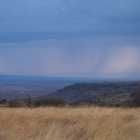 Rains in Africa